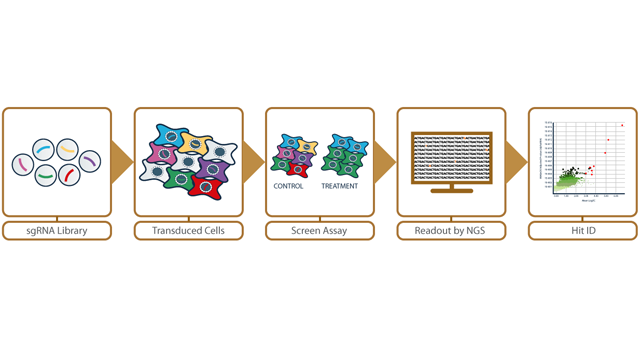 Horizon Discovery Announces Collaboration on single cell RNAseq-linked CRISPR Screening