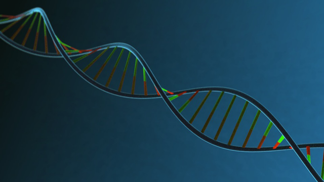 Horizon Discovery Introduces Whole Human Genome Arrayed Libraries to Support CRISPR Activation Screening