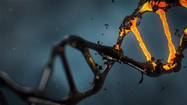 Horizon Discovery Launches Genome-Wide CRISPRi and CRISPRa Screening Services