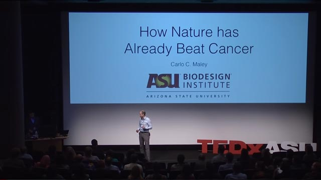 How Nature Has Already Beaten Cancer