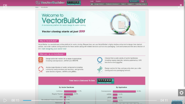 How to Use VectorBuilder to Fulfill Your Cloning Needs