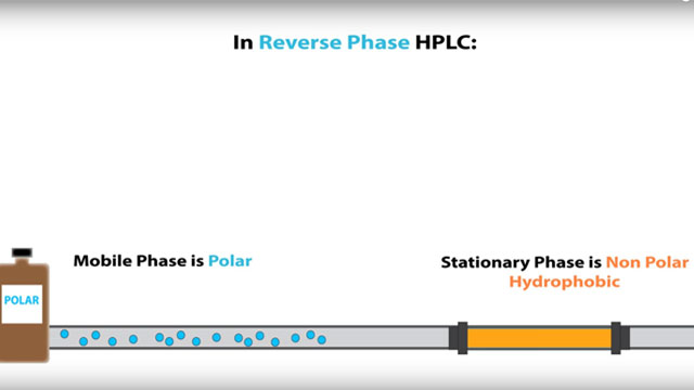HPLC - Normal Phase vs Reverse Phase