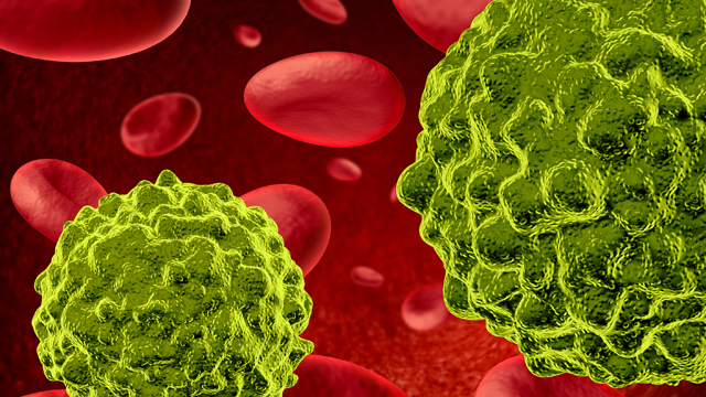 HVEM Products for Immuno-Oncology Research
