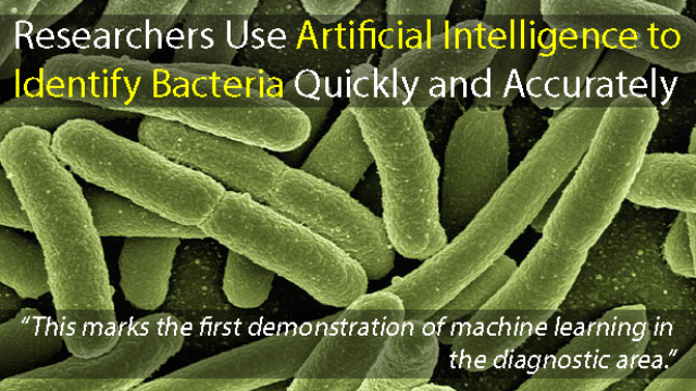 Identify Bacteria Quickly and Accurately Using Artificial Intelligence