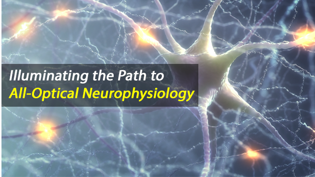 Imaging Nerve Cell Function: All-Optical Neurophysiology