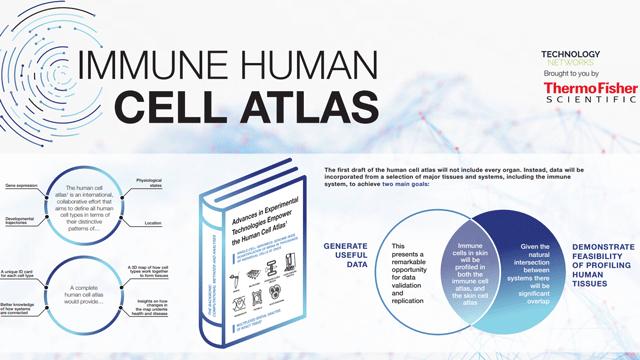 Immune Cell Atlas