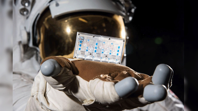 Immune System on a Chip Launched to Space