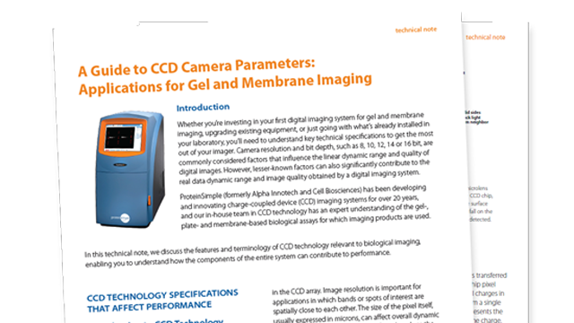Improve Your Gel and Membrane Imaging: A Guide to CCD Camera Parameters [Technical Note]