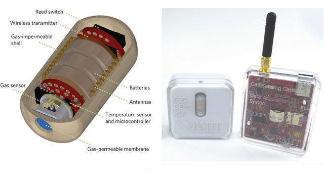 Indigestible Electronic Capsule Analyses Gut Gases