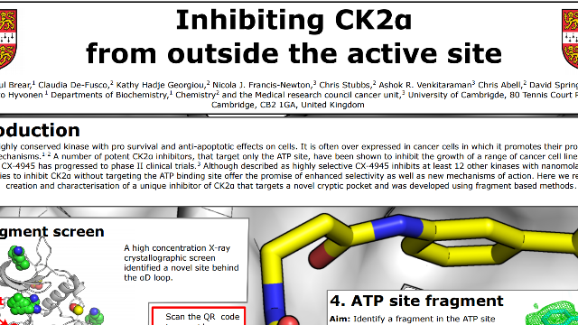 Inhibiting CK2α from Outside the Active Site