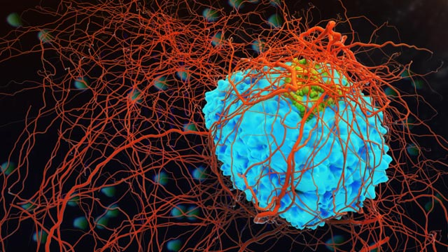 Innovations in Oncology: The Cancer Moonshot and Beyond