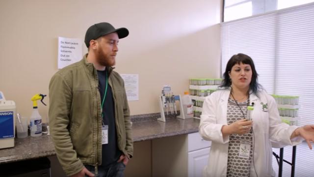 Inside a Cannabis Testing Lab
