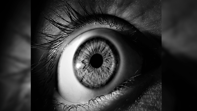 Iris Scanner Can Distinguish Dead Eyeballs From Living Ones