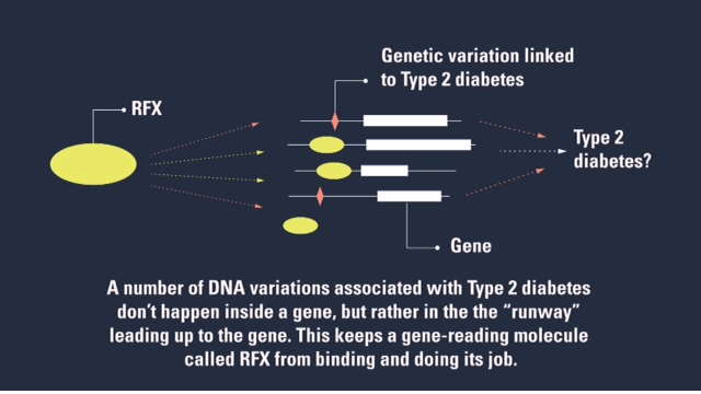 Is Diabetes in Your DNA?