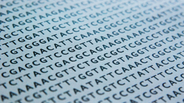 Scientists identify schizophrenia's 'Rosetta Stone' gene