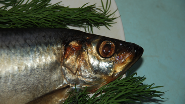 Neurotoxin found in commercial seafood