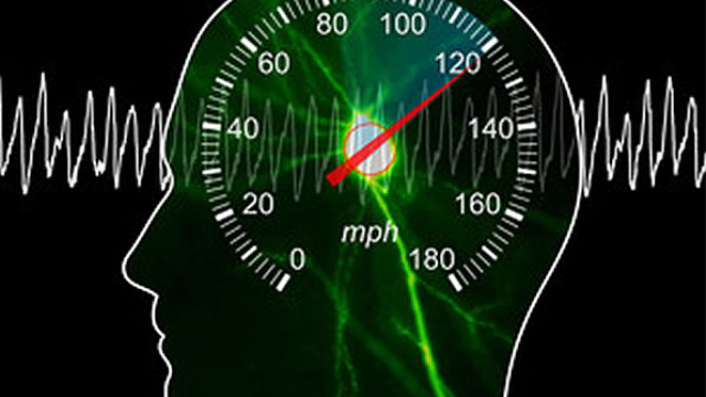 Researchers find speedometer in the brain