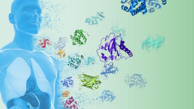 JPT Introduces The Human Proteome Peptide Catalog