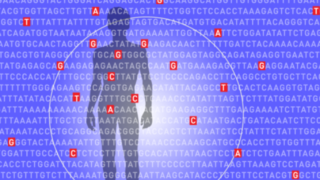 Keeping Score On Polygenic Risk Factors