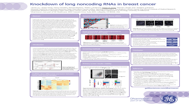 Knockdown of Long Noncoding RNAs in Breast Cancer