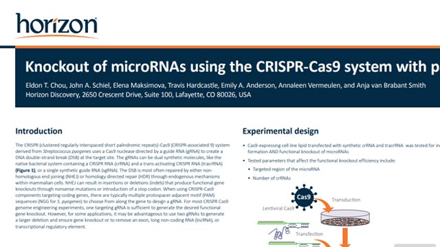 Knockout of microRNAs Using the CRISPR-Cas9 System with Paired Synthetic crRNAs