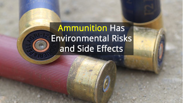 Lead-Free Ammunition Even More Toxic than Traditional Shot