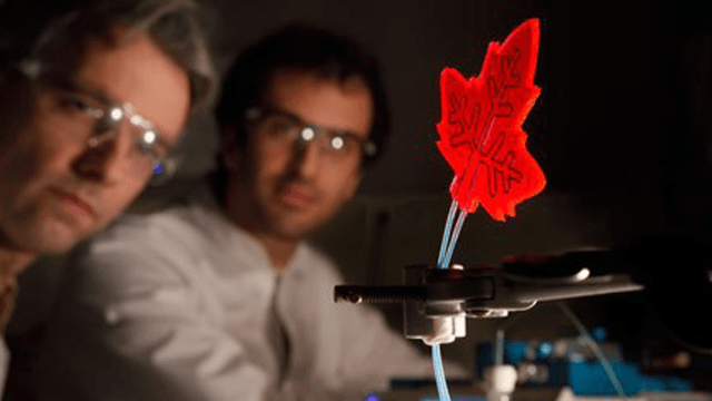 Leaf-Inspired Photomicroreactor Could Power A Step Change In The Chemical Industry