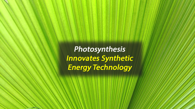 Lessons From Photosynthesis Innovate Synthetic Energy Gathering Systems