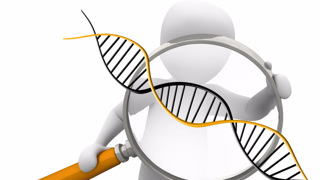 Library of More Than 330,000 Reference Peptides Made