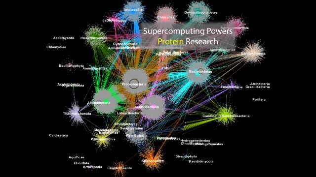Living on the Edge: Supercomputing Powers Protein Analysis