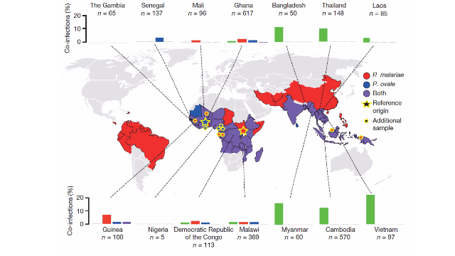Long Awaited Malaria Reference Genomes Published