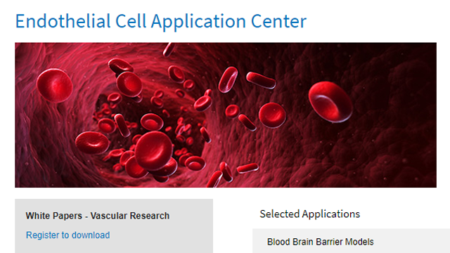 Lonza Expands Support for Researchers with New Endothelial Cell Application Center