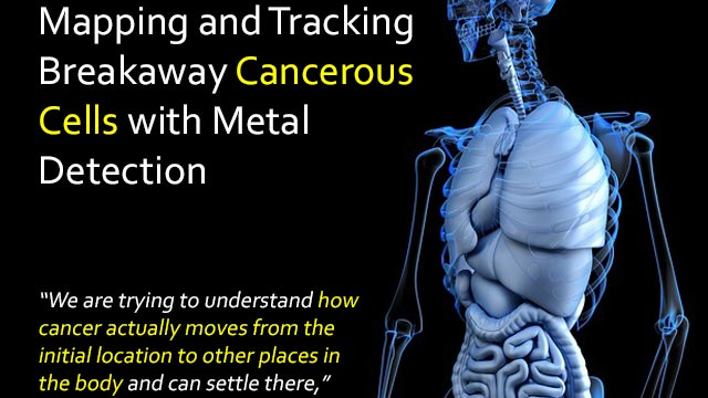 Mapping and Tracking Breakaway Cancerous Cells with Metal Detection