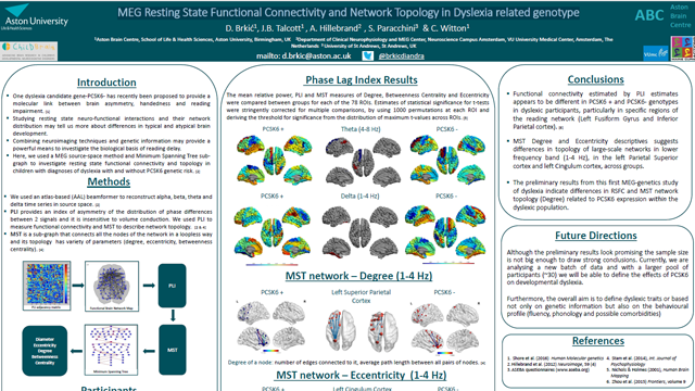 MEG Resting State Functional Connectivity and Network Topology in Dyslexia Related Genotype