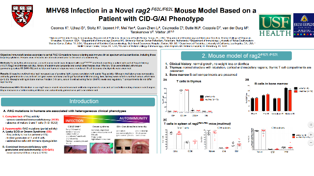 MHV68 Infection in a Novel rag2 F62L/F62L Mouse Model Based on a Patient with CID-G/AI Phenotype