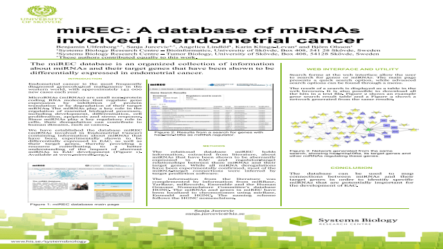 miREC: A database of miRNAs involved in endometrial cancer