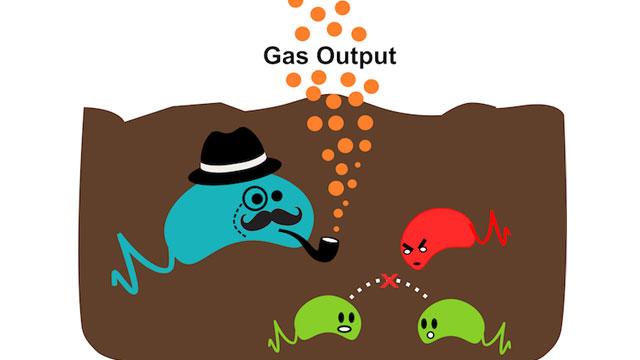 Microbial Sensor Provides Non-Destructive Snapshot of Environments