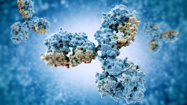 Microfluidic Method Identifies Rare Antibodies with Therapeutic Potential