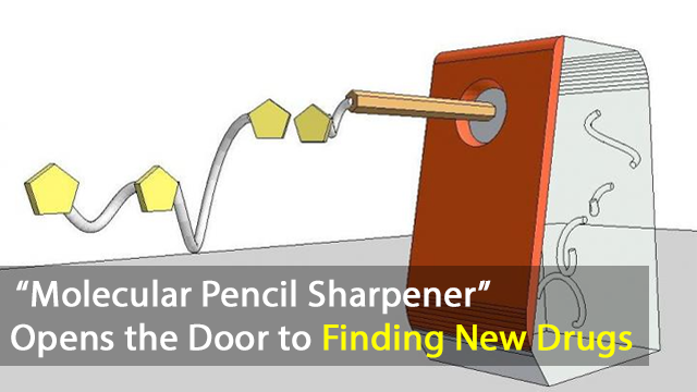 """Molecular Pencil Sharpener"" Discovery Opens the Door to Finding New Drugs"