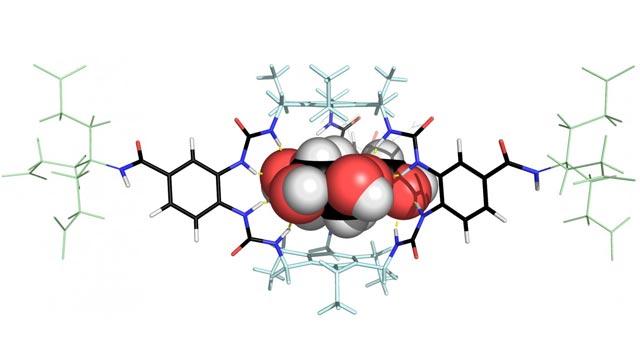 Molecule Could Transform the Treatment of Diabetes