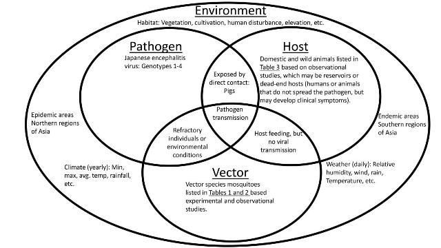 More Focus Needed on Disease Vectors