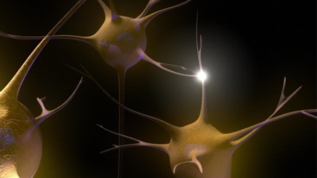 Cold-shock protein protects against neurodegeneration