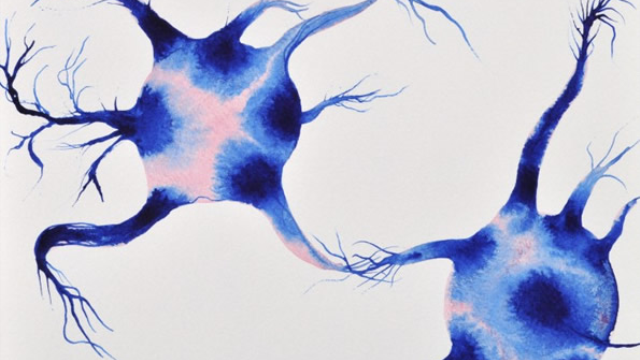 New insights could result in changes to the therapeutic strategy to combat Alzheimer's