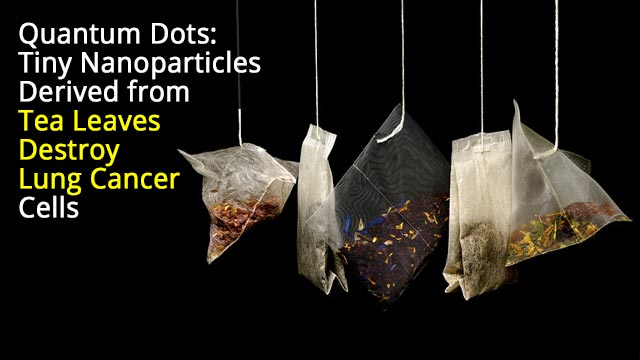 Nanoparticles Derived from Tea Leaves Destroy Lung Cancer Cells