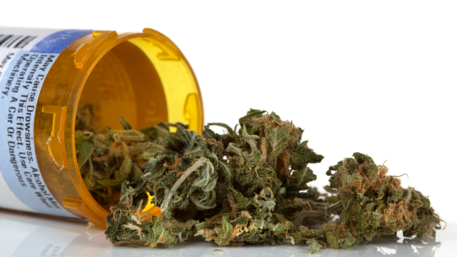 Neptune Files Two Patent Applications for Innovative Cannabis Extraction Processes