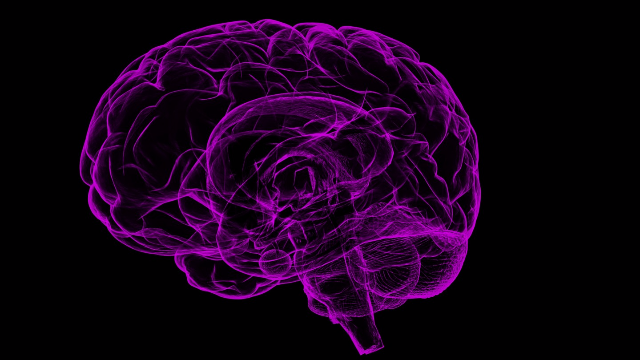 Neuro-Imaging Measures Criminal Intent