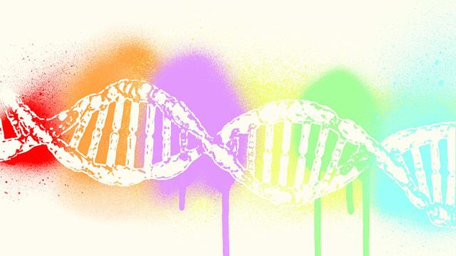 Neuropathological Gene Shows Altered Lipid Metabolism