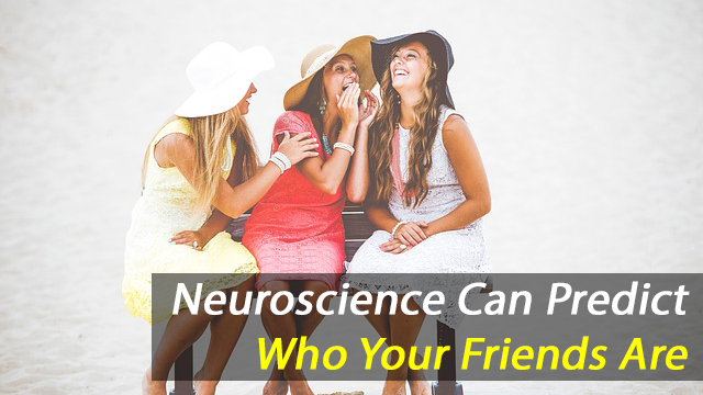 Neuroscience Can Tell You Who Your Friends Are