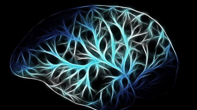 Neuroscience News and Research Round-Up