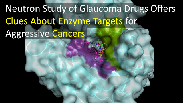 Neutron Analysis of Glaucoma Drugs Could Help Aggressive Cancer Drug Design